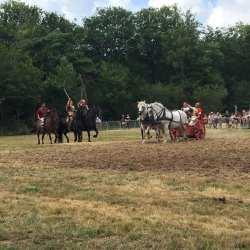 spectacle-equestre-2020-les-celtes-AG-Divino-Aventureaugalop-09