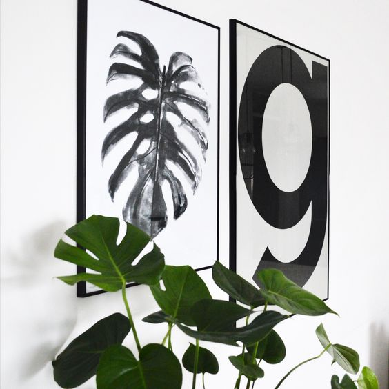 urban-jungle-affiche-vegetale-aventure-deco