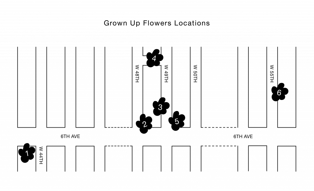 13-GrownUpFlowers-Locations-Transparent-Background
