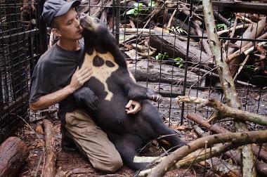 Offrez une seconde vie aux ours malais pris en charge par Patrick Rouxel !