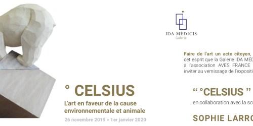 ° CELSIUS : la galerie IDA MÉDICIS expose les ours polaires de Sophie Larroche
