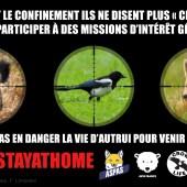 ARNAQUES AU CONFINEMENT : STOP AUX DÉROGATIONS POUR LES CHASSEURS !