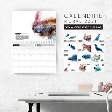 Calendrier mural 2021 - Lapin