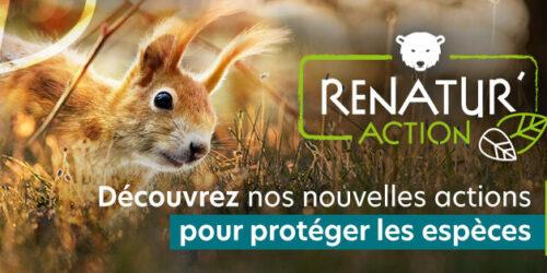 Renatur'Action : AVES France lance sa campagne de crowdfunding pour rendre à la nature des parcelles dégradées par l'agriculture intensive