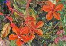 """Verlängert bis 16.02.2020, Ausstellung/Sound-Installation: """"Natur. Nach Humboldt"""" im Großen Tropenhaus des Botanischen Gartens Berlin"""