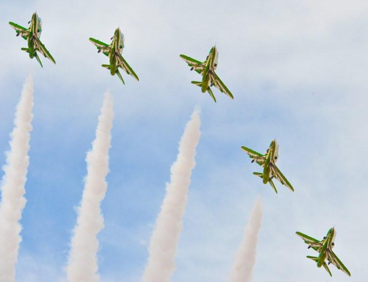 royal saudi hawks
