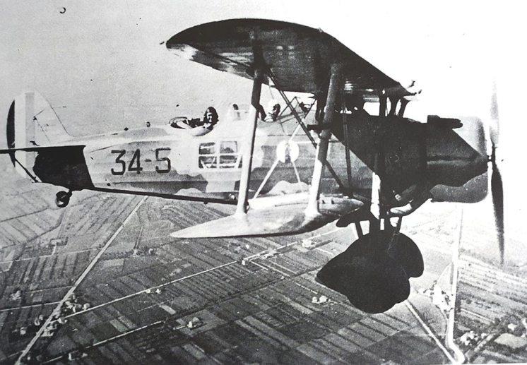 IMAM-RO37-Bis-34-sq-61-gr