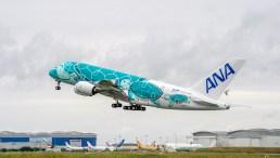 All-Nippon-Airways-A380 Green
