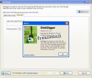 diskdigger license
