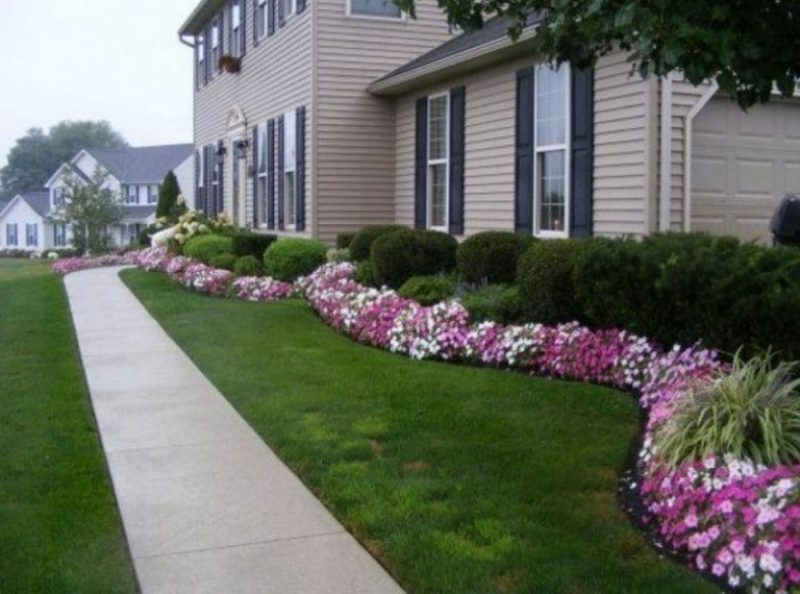 Front Yard Landscaping Ideas - Make a Focal Point