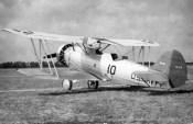 Goj-2