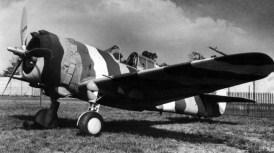 Gp36-hawk-2