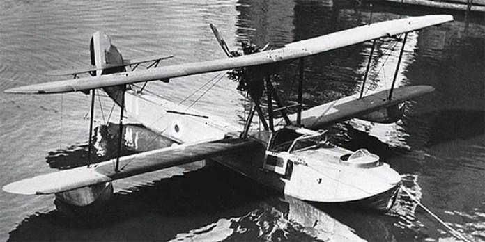 Gvedette-2