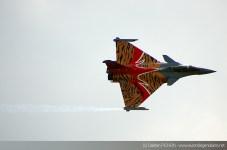 Dassault Rafale - Meeting Armée de l'Air - Nancy 2014