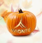 fall-webinar-series