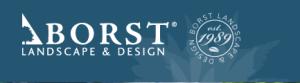 borst-logo-blue