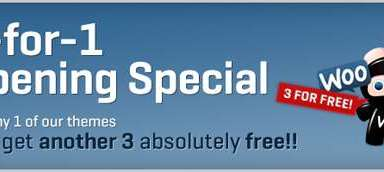 4 for 1 woo themes - Woothemes Special : 4 for 1 on WOO2 Launch