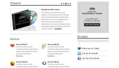 consultant avjthemescom premiumthemes - Consultant Wordpress Theme