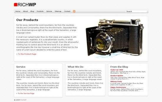 richbiz richwp avjthemescom 550x347 - RichBiz Wordpress Theme