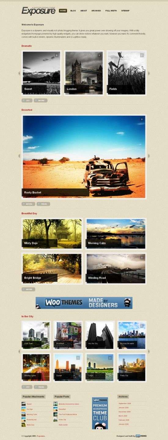 exposure woothemes premium photo wordpress theme 550x1434 - Exposure Wordpress Theme