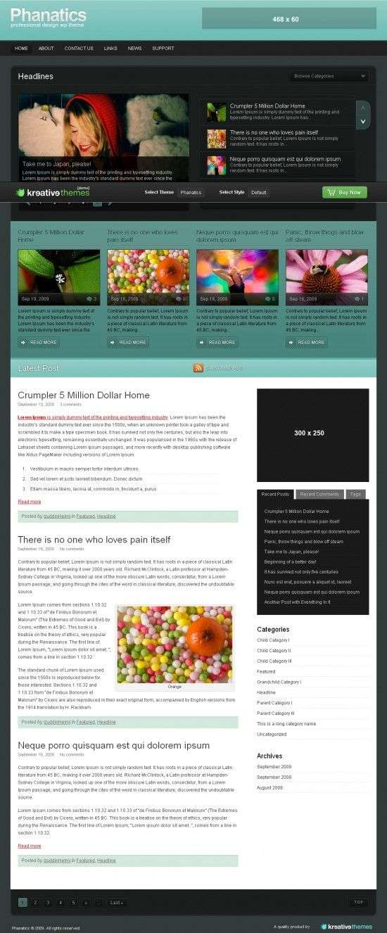phanatics 550x1326 - Kreative Premium Wordpress Themes