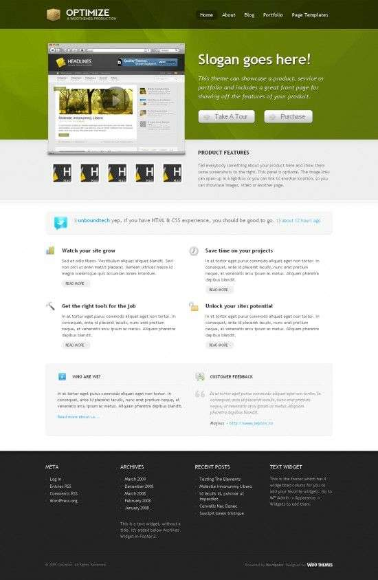 optimize woothemes wordpress theme 550x843 - Optimize Wordpress Theme