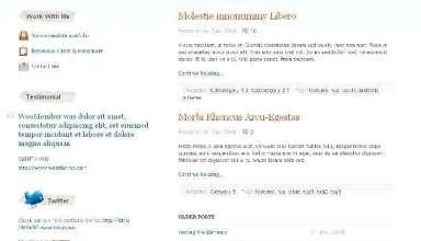 sophisticatedfolio wordpress theme - Sophisticated Folio Wordpress Theme
