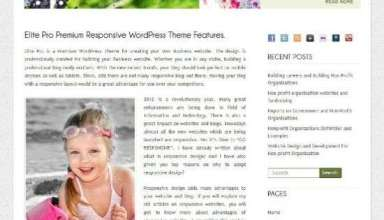 elite pro inkthemes avjthemescom 01 - Elite Pro WordPress Theme