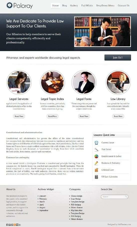 poloray inkthemes avjthemescom 1 - Poloray WordPress Theme