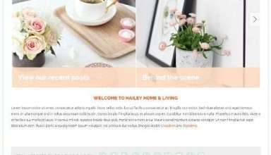 hailey bluchic avjthemescom 01 - Hailey WordPress Theme