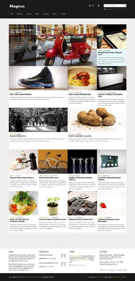 magnus colorlabsproject avjthemescom 01 - Magnus WordPress Theme