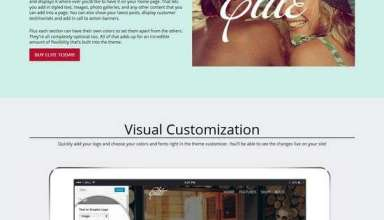 elite organizedthemes avjthemescom 01 - Elite WordPress Theme