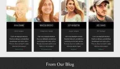 collective organic themes avjthemescom 01 - Collective WordPress Theme