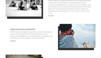 adagio wordpress theme viva themes - Adagio WordPress Theme