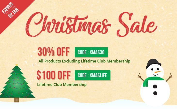 Themify Christmas & New Year 2018 Sale