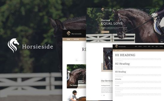 64356 big - 10 Newest WordPress Themes For Entertainment and Leisure Websites