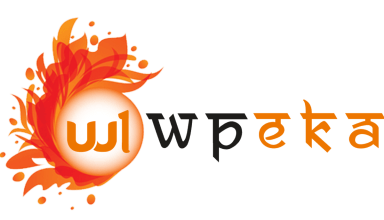 wpeka - 25% Off On WPEKA Premium WordPress Plugins