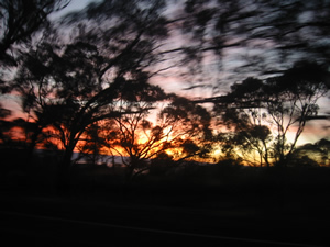 the view of the sunrise from the car. it looked better in real life.