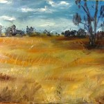 Oil painting by avril e jean of grassland at wyperfeld national park, in a more abstract style than is my usual. Painted over a failed painting. I consider this a failed painting over a failed painting!
