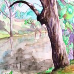 Watercolour painting of a gum tree and a dam