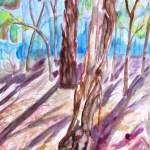 Watercolour painting of trees at blackburn lake park, victoria