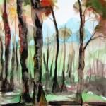 A watercolour paitingofan australian landscape with darkened tree trunks