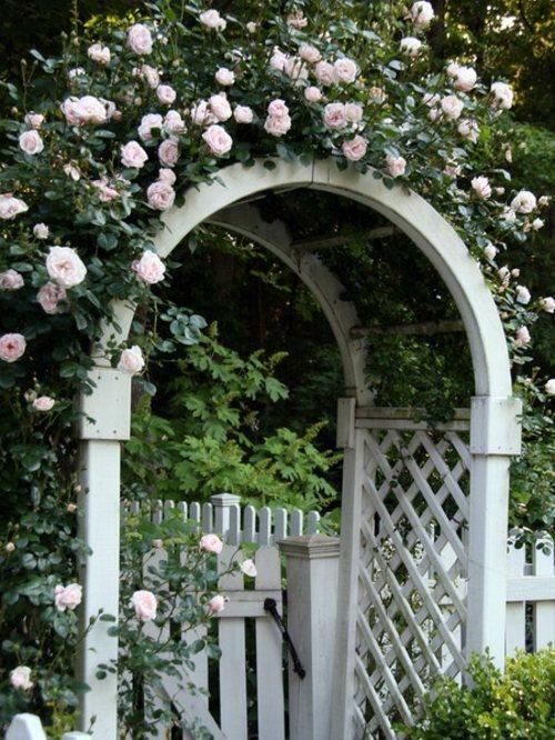 Arches Metal Garden