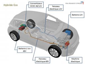 Eco Hybrid: kombinacija 12- in 48-voltne napetosti