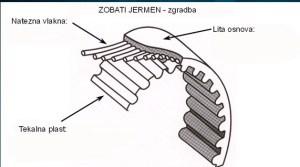 Zgradba zobatega jermena