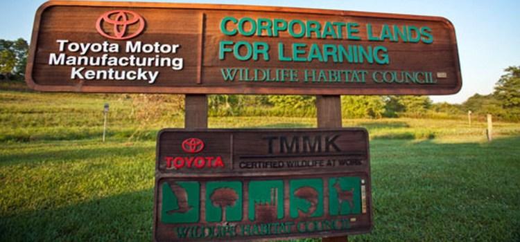 Bo Toyota plačala milijardo dolarjev odškodnine?