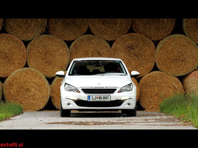Peugeot_308_16_THP_Active_106