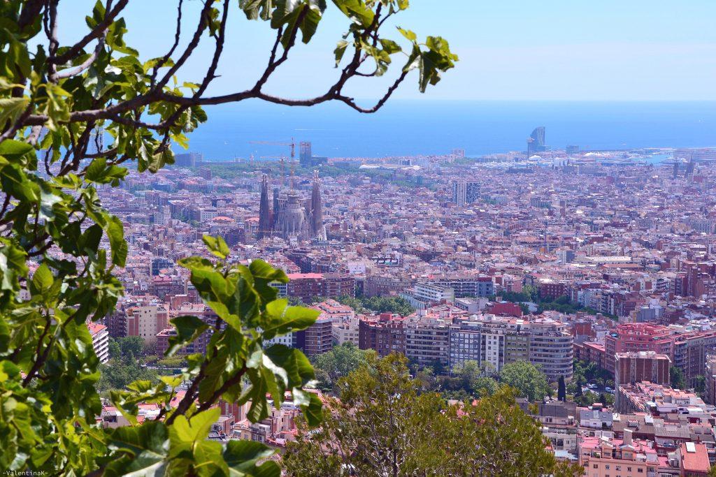 erasmus traineeship a Barcellona