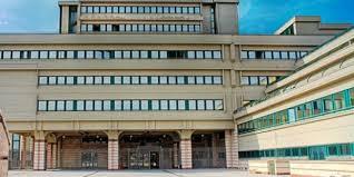 REITERAZIONE CONTRATTI A TEMPO DETERMINATO E PROGRESSIONE STIPENDIALE: ACCOLTO IL RICORSO DAL GIUDICE DEL LAVORO