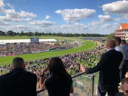 Racecourse view 2